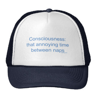Consciousness: that annoying time between naps trucker hat