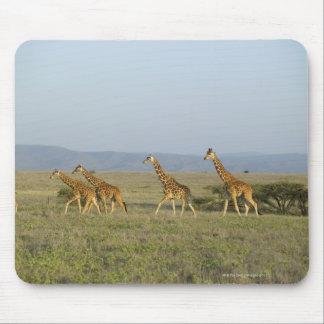 Conservación de la fauna de Lewa, Kenia Alfombrilla De Ratones