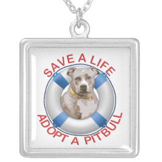 Conservante de vida con la adopción de Pitbull Grimpola