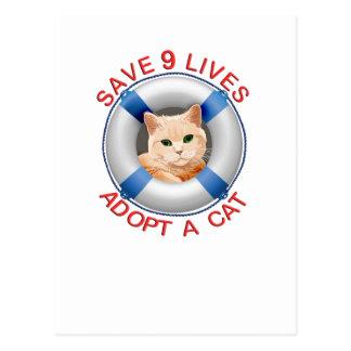 Conservante de vida con la adopción del gato tarjeta postal