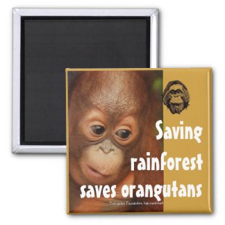 Conservation 2 Inch Square Magnet