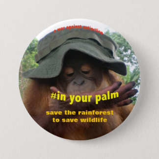 Conservation Activist for Animal Welfare Button