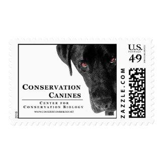 Conservation Canine Postage Stamp