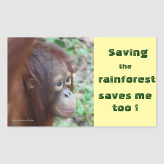Conservation: Great Apes and Rain Forest Rectangular Sticker