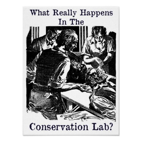 Conservation Lab Pulp Fiction