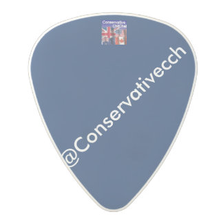 ConservativeChitChat: Regular Polycarbonate Guitar Pick
