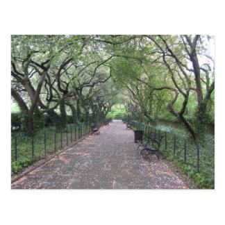 Conservatory Garden Central Park New York City NYC Postcard