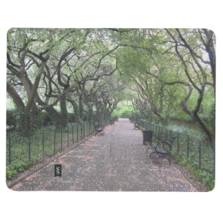 Conservatory Garden Central Park NYC Photography Journal