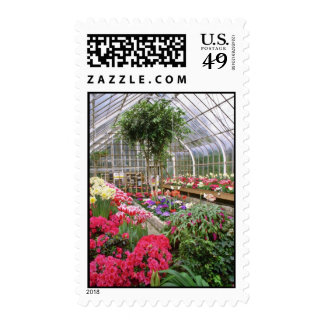 Conservatory W/ Spring Flowers flowers Postage