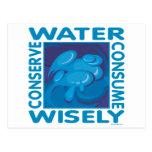 Conserve el agua - uso sabiamente tarjetas postales