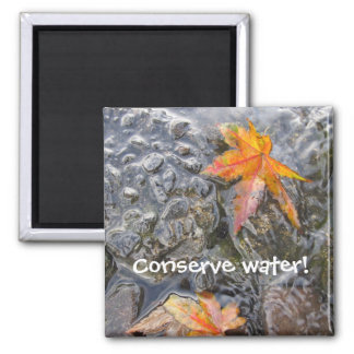 Conserve Water! Magnet