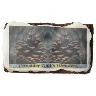 Consider God's Wonders Pine Cone On Cedar Fence Chocolate Brownie