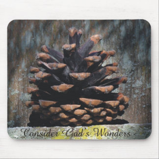 Consider God's Wonders Pine Cone On Cedar Fence Mouse Pad