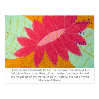 Consider the Lilies D&C postcard
