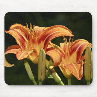 Consider The Lilies Of The Field Mouse Pad