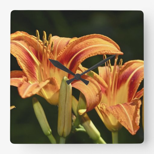 Consider The Lilies Of The Field Square Wall Clock