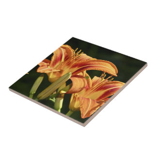 Consider The Lilies Of The Field Tile