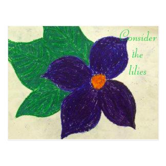 Consider the lilies Scripture Art Matthew 6:24 Post Cards