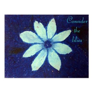 Consider the lilies Scripture Art Matthew 8:8 Postcard
