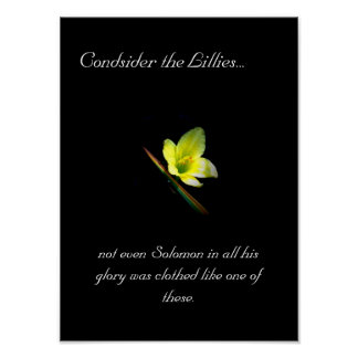 Consider the Lillies 100 Poster