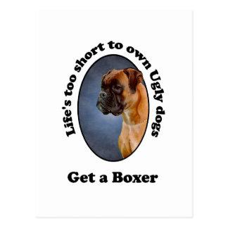 Consiga a un boxeador postales