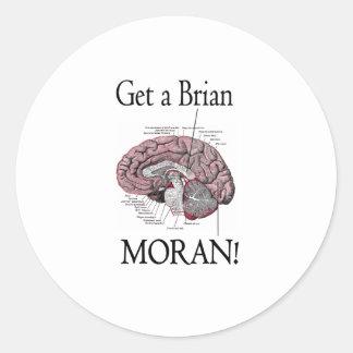 ¡Consiga a un Brian, Moran! Pegatina Redonda