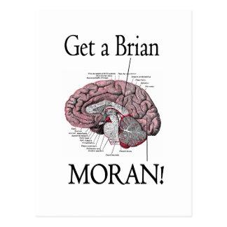 ¡Consiga a un Brian Moran Tarjetas Postales