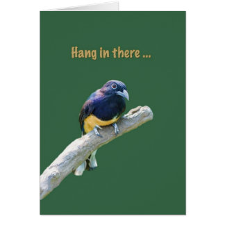 Consiga bien, pájaro que cuelga en un miembro, tar tarjeta de felicitación