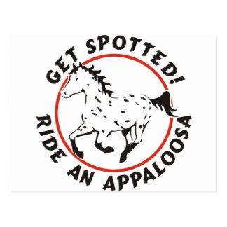 Consiga el Appaloosa manchado del leopardo Tarjeta Postal