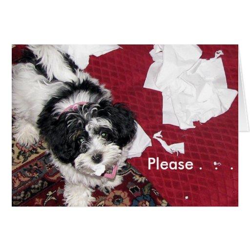 Consiga el perrito bien. tarjetas
