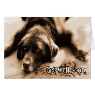Consiga el perro bien del labrador retriever del tarjeta de felicitación