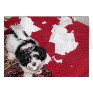 Consiga el pozo - tarjeta del perrito de Havanese