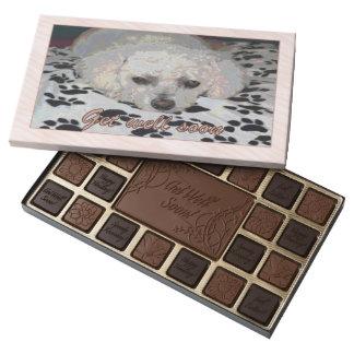 Consiga la caja pronto blanca bien del chocolate