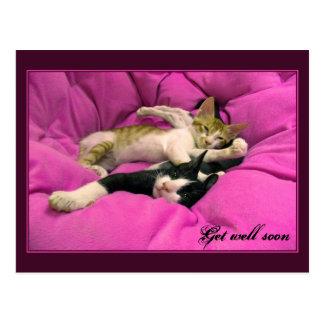 Consiga los gatitos rosados del pozo pronto - tarjetas postales