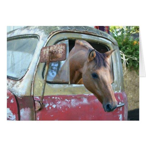 ¡Consiga un caballo! Tarjeta