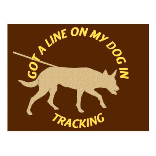 Consiga una línea en el seguimiento postal