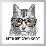 Consigamos a Cray Cray Póster