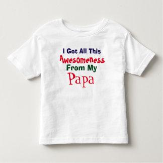 Consigo mi Awesomeness de mi camiseta de la papá Remera