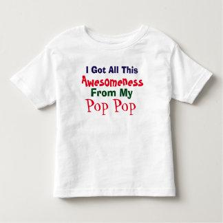 Consigo mi Awesomeness de mi camiseta del Camisas