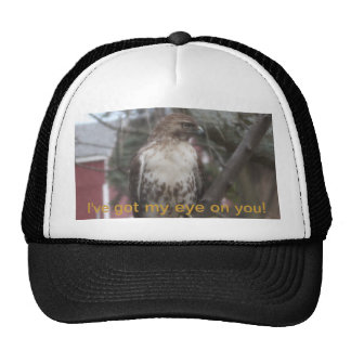Consiguió a mi ojo en usted el gorra del camionero
