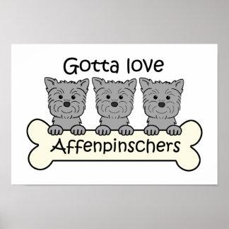 Consiguió amar Affenpinschers Póster