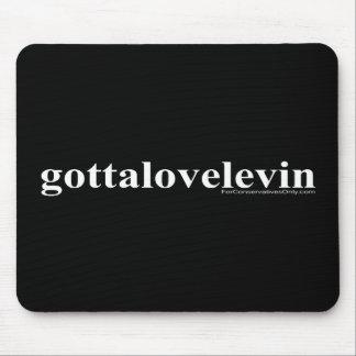 Consiguió amar Levin Tapetes De Ratones