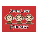 Consiguió amar monos postal