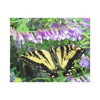 Consiguió mis flores en una mariposa de la fila lona envuelta para galerias