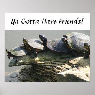 Consiguió tener amigos, amigos de la tortuga póster