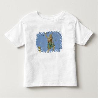 """Constelación de Bootes, de """"Uranometria"""" por Joh Camisas"""