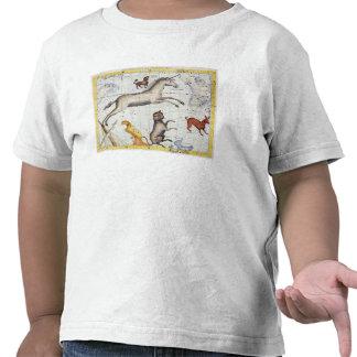 Constelación de Monoceros con el comandante de Camiseta