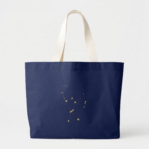 Constelación Orion constellation