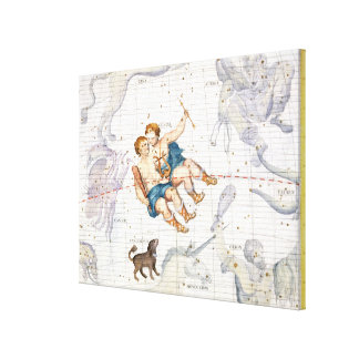 Constellation of Gemini with Canis Minor, plate 13 Canvas Print