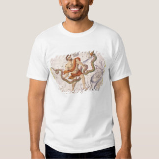Constellation of Ophiucus and Serpens, plate 22 fr Tee Shirt
